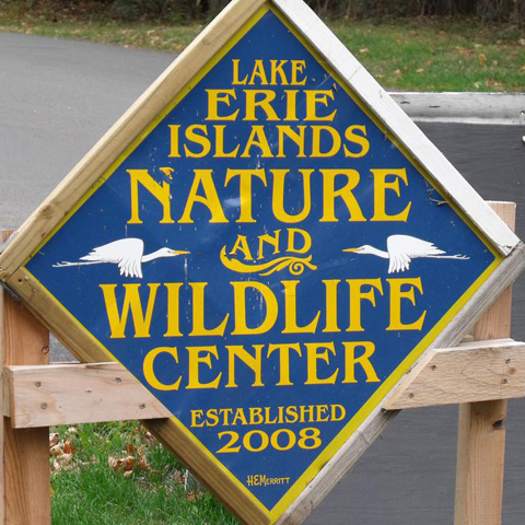 Intro to Nature Camp-South Bass Island