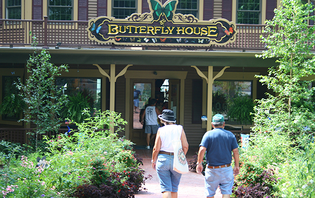 The Butterfly House At Put In Bay