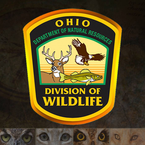 ODNR-Division of Wildlife