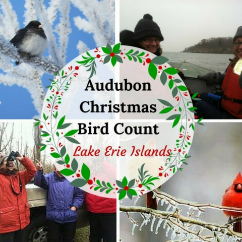 Audubon Christmas Bird Count - Middle Bass Island