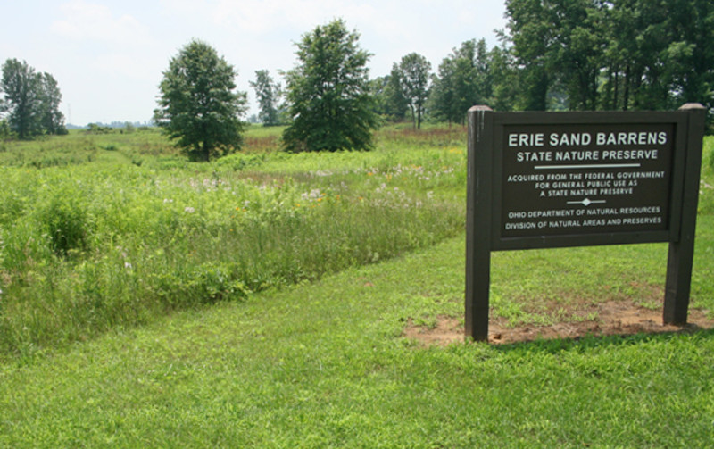 Erie Sand Barrens State Nature Preserve
