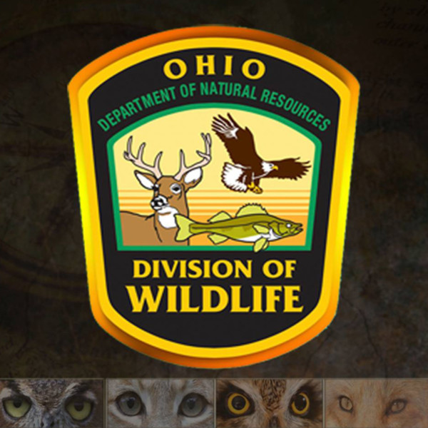 Ohio Fishing Licenses and Rates